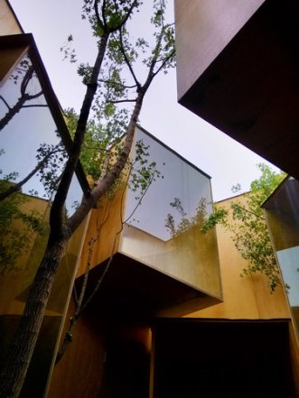 standardarchitecture_Tree_1__large