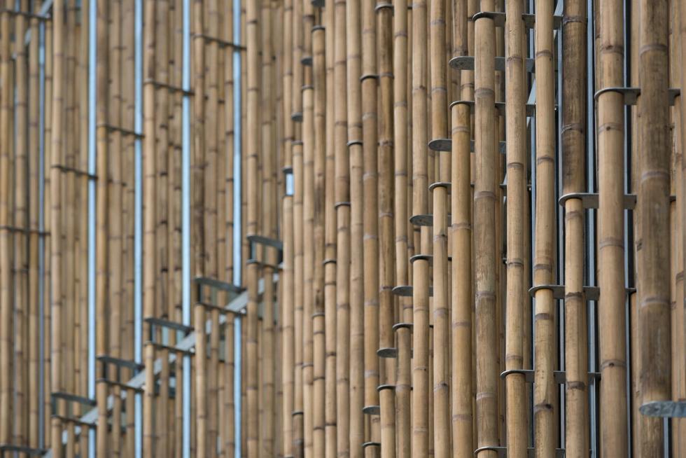 20140224161256_Bamboo_brise
