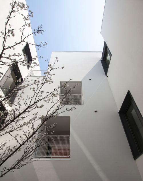 gap-house-archihood wxy-startfortalents-5