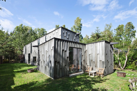forest-house-primus-architects-01