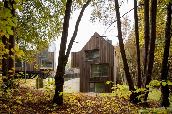 rasu-namai-housing-paleko-studija-plazma-architects-04