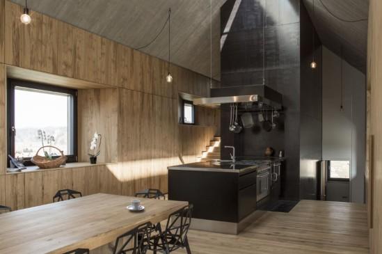chimney-house-dekleva-gregoric-architects-slovenia-06